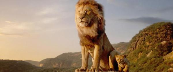 lion king battle cry # 48