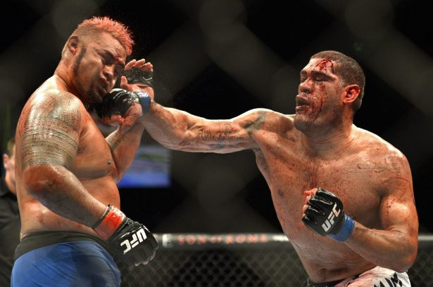 "Image result for Antonio ""Bigfoot"" Silva"