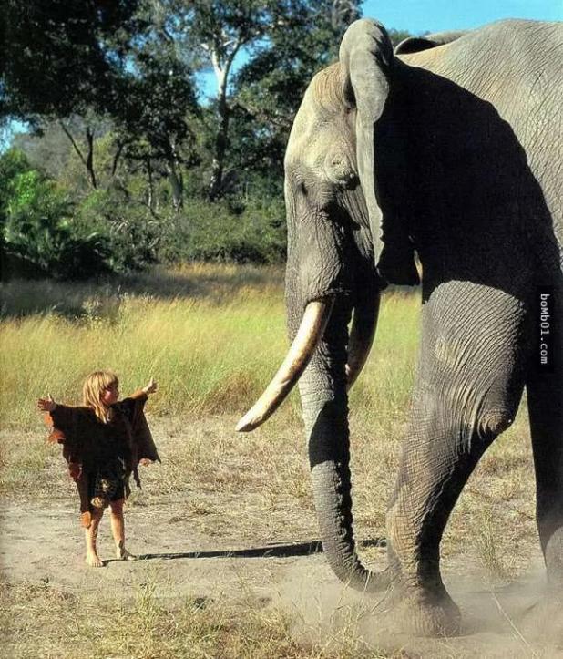 法國女孩從小就在非洲跟動物長大... 組圖