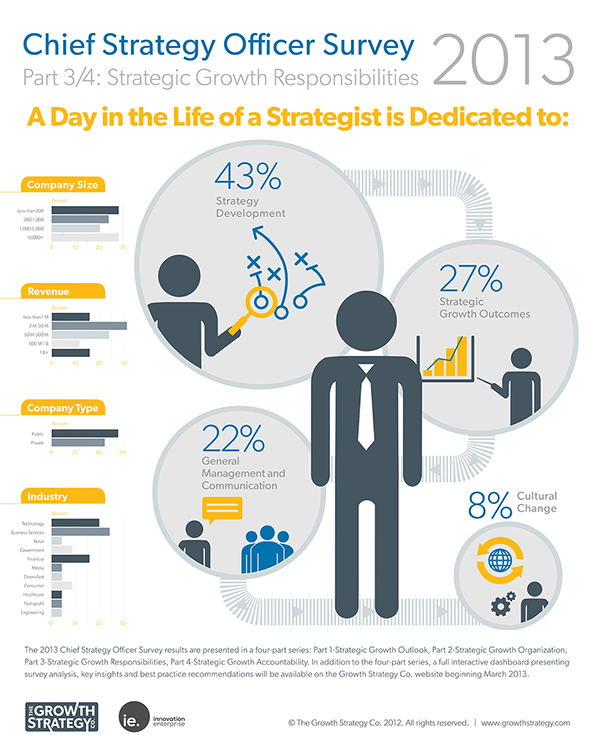 Chief Strategy Officer Survey | Infographic Series on Behance