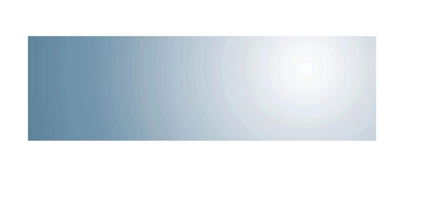 Miroir Non Lumineux Decoupe Rectangulaire L 30 X L 100 Cm Poli Leroy Merlin