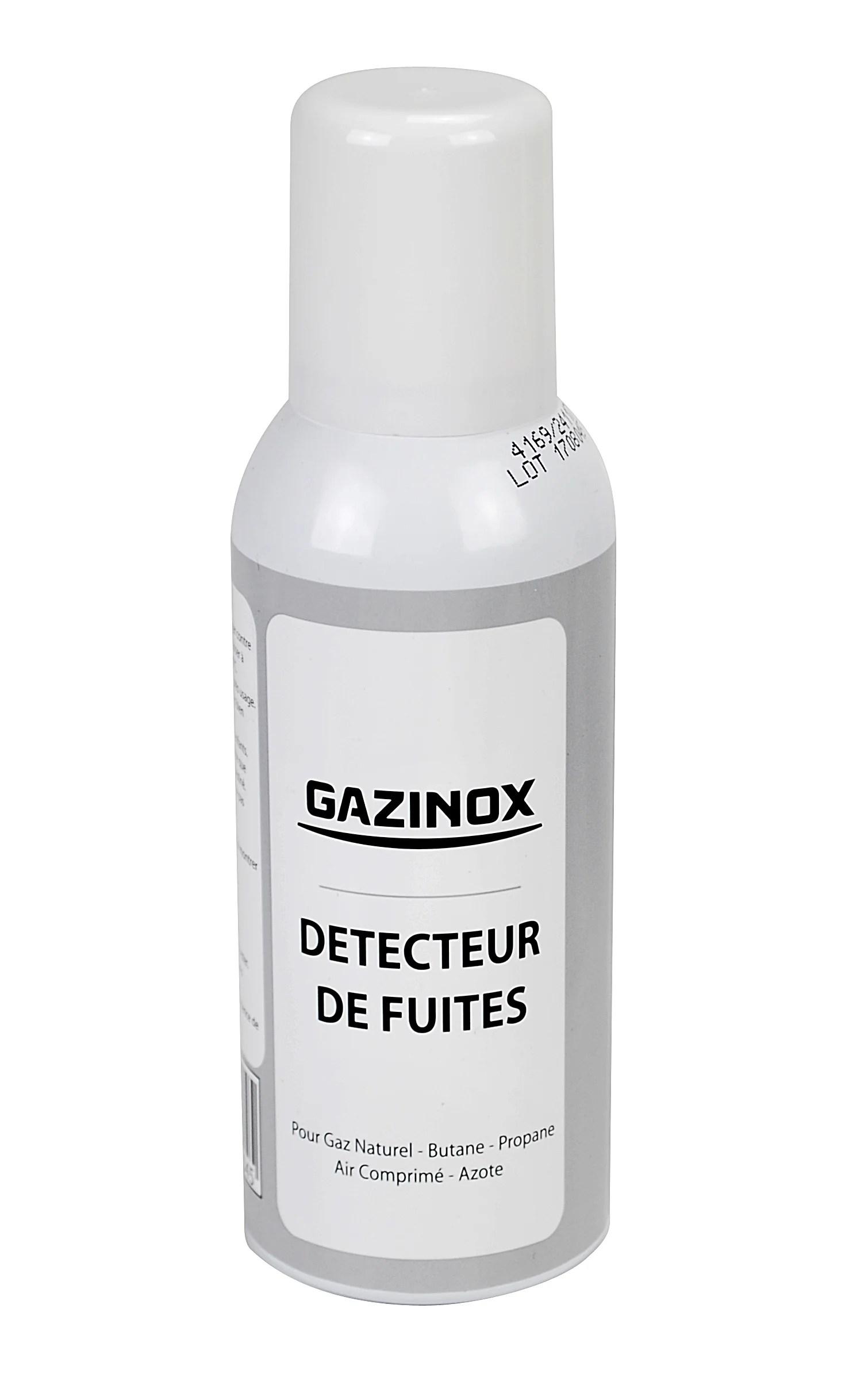 Detecteur De Fuites En Aerosol Pour Tout Type De Gaz Gazinox Leroy Merlin