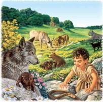 Argumento: Biblia dice nada sobre respetar animales