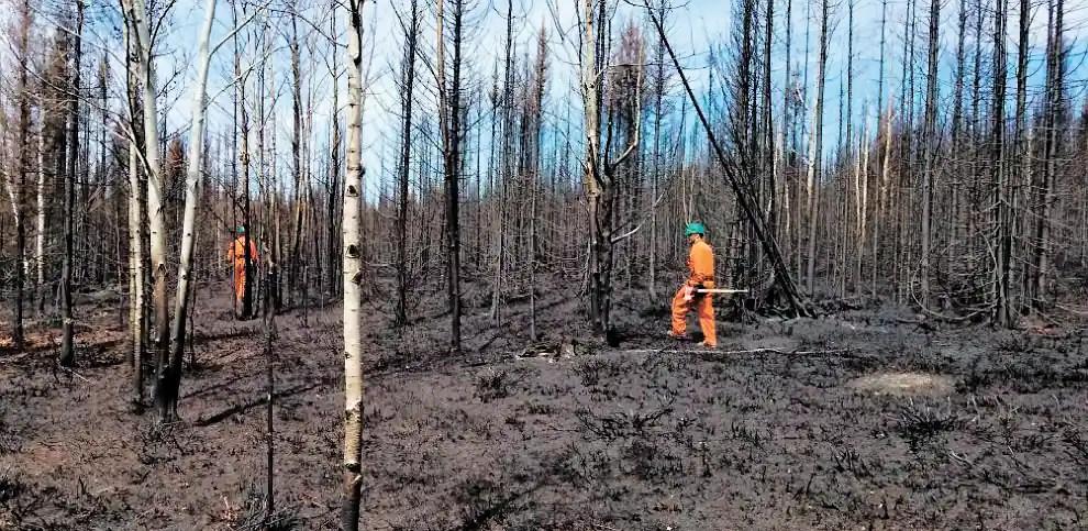 Incendie au Saguenay–Lac-Saint-Jean: la partie loin d'être gagnée