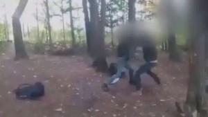 Cowansville: un ado de 13 ans agressé dans un boisé voisin de son école secondaire