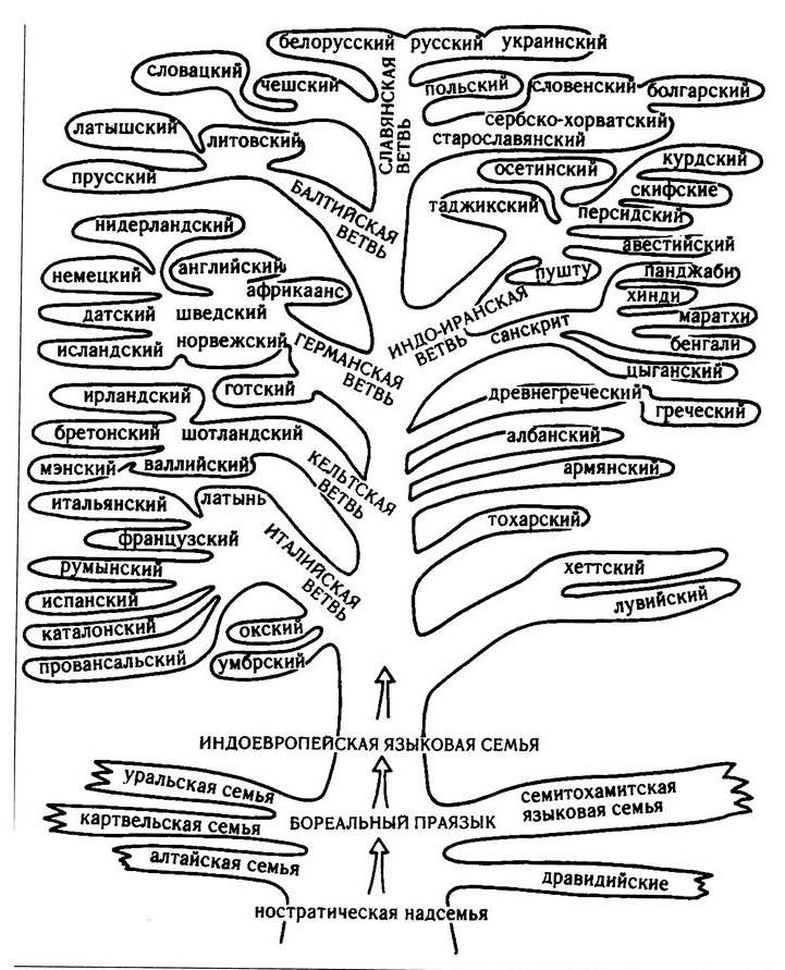 Индоевропейские языки