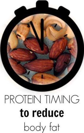 protein timing