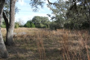 30 Acres For Sale – Lavaca County – SOLD