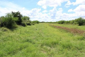 68 Acres For Sale