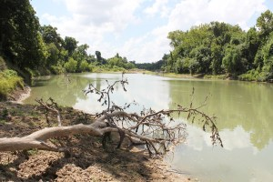 400 Acre Guadalupe River Ranch For Sale – SOLD!