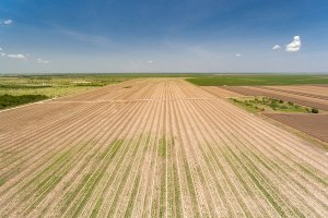 405 Acre Farmland For Sale