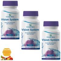 Vision System 270G