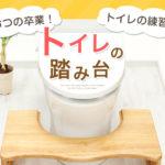 「折りたたみトイレトレーニング踏み台」 が、あれば  安心トイレトレーニング!