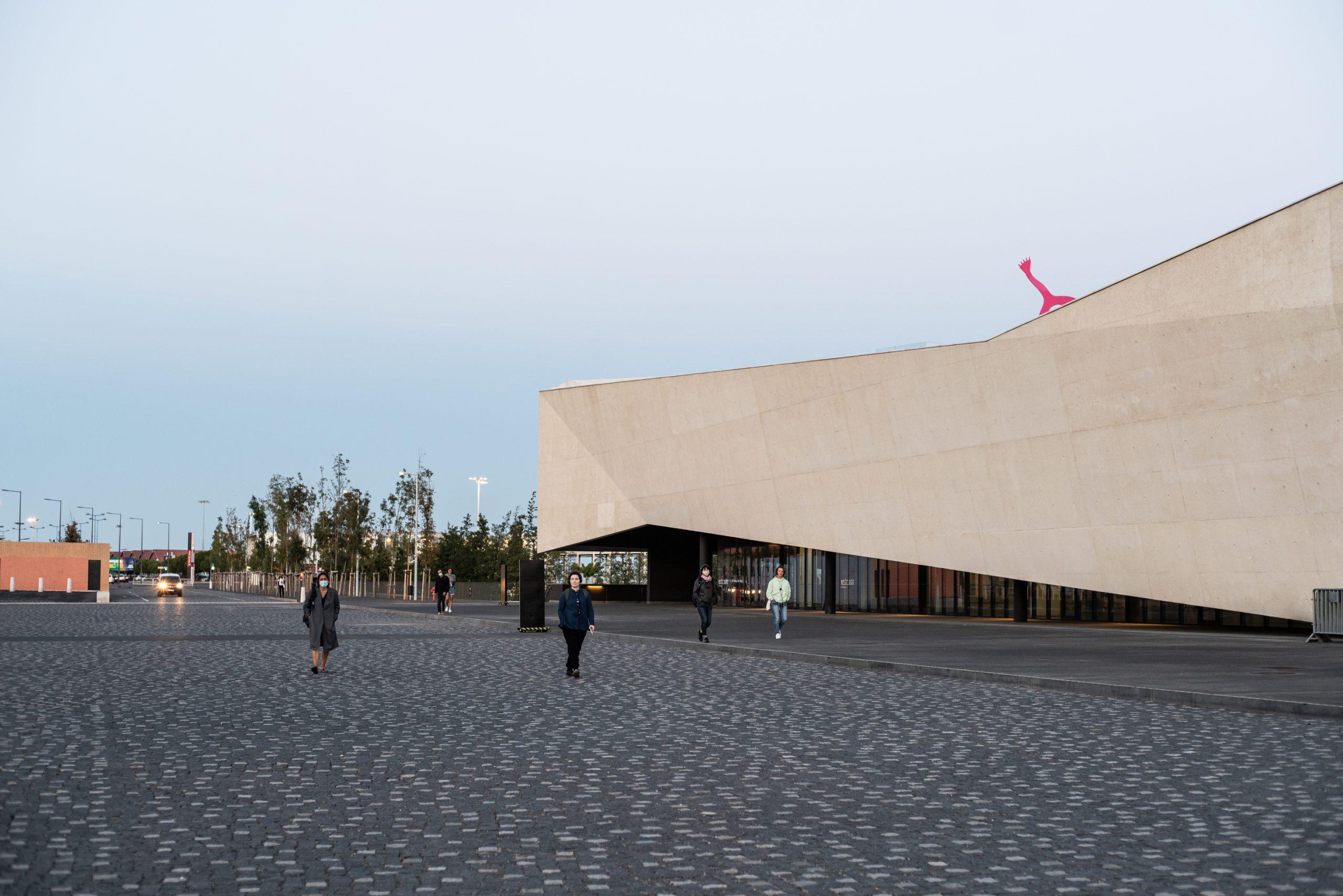 Terra Nullius Lisbon/2020