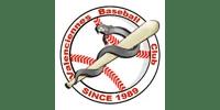Logo Client VALENCIENNES BASEBALL CLUB (Ma Mascotte - fabrication sur mesure de mascottes et peluches).