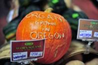 Organic Oregonian pumpkin