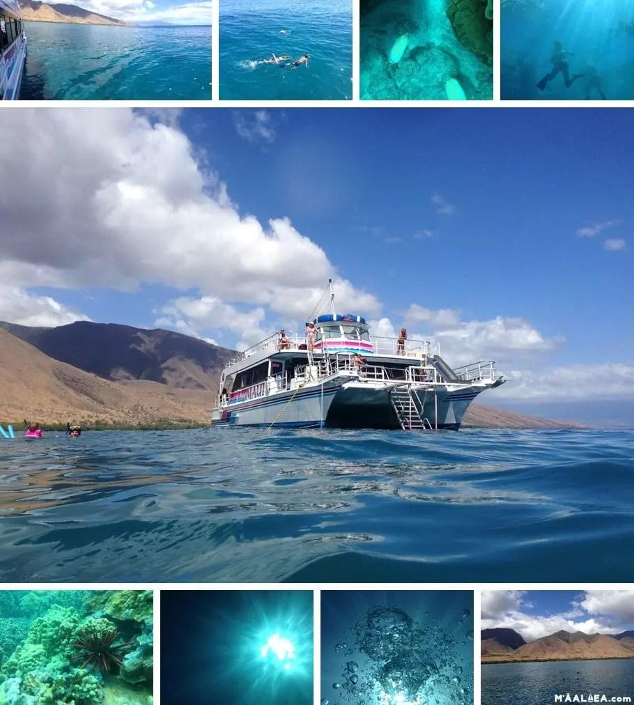 maalaea snorkeling
