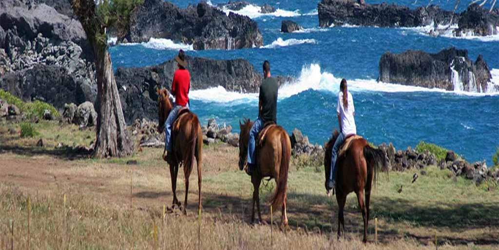 Ride Horseback on Maui with Maalaea Harbor Activities