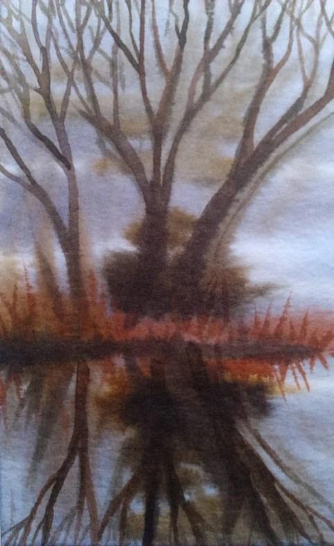 Puu 3