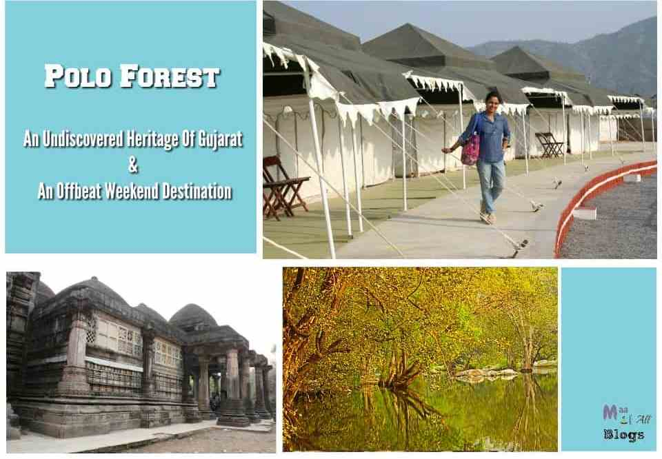Polo Forest – A Forgotten Heritage Of Gujarat And An Offbeat Weekend Destination