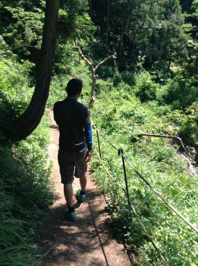 野猿公苑までの林道歩道