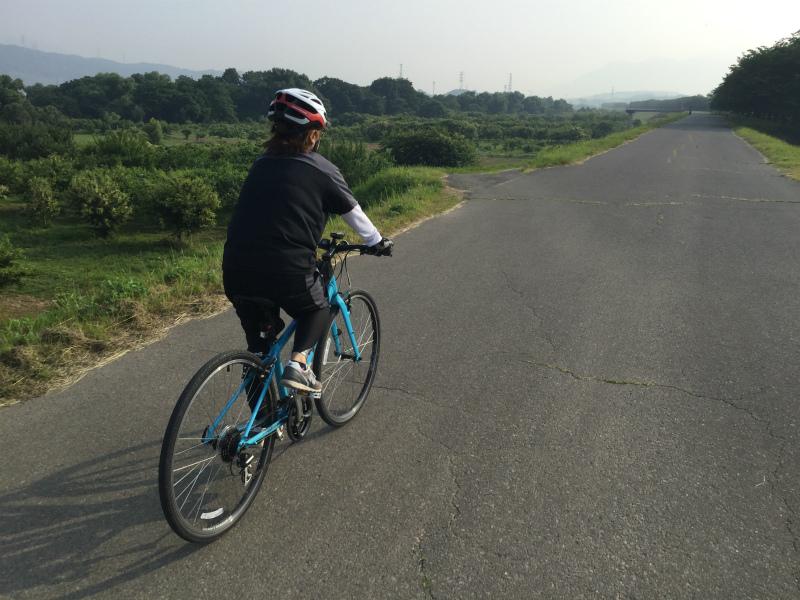 千曲川サイクリングロード小布施橋付近