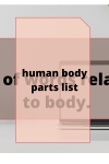 List of words related to body.