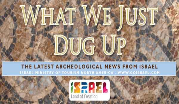 Archeology-head