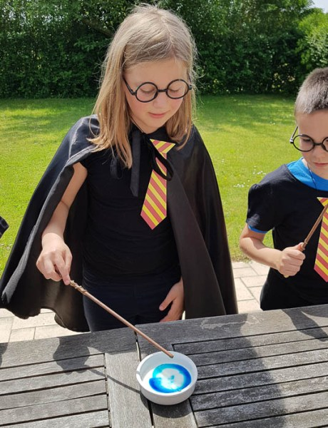DISPERSUM ! Sa fête d'anniversaire Harry Potter