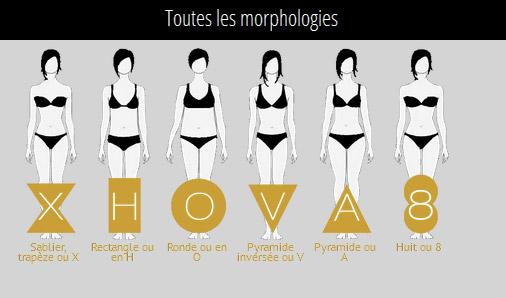 Différents types de morphologies