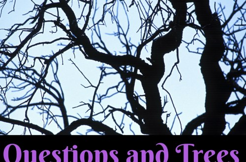 Questions and Trees