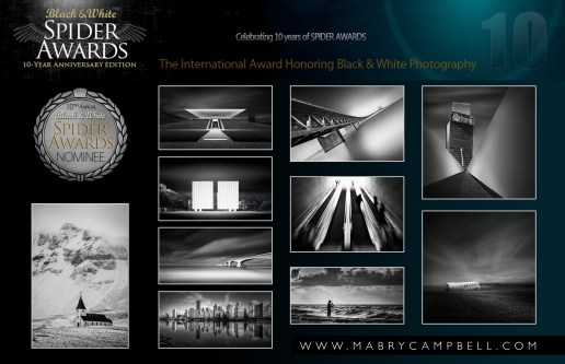 2015-Black-and-White-Spider-Awards-Collage-Mabry-Campbell