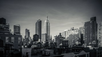 Empire-State-In-The-Skyline-Mabry-Campbell