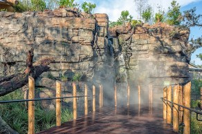 Gorilla-Exhibit-At-the-Houston-Zoo-March-2015-Mabry-Campbell-2