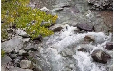 Les conseils de Maiwenn – Faites de l'eau votre alliée