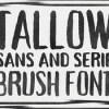 creativemarket_tallow_brush_352494_icon