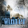 winter_lightroom_presets_389615_icon.jpg