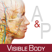 Anatomy physiology an introduction to body structures and function icon