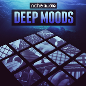 Niche audio deepmoods icon