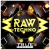 True samples raw techno icon