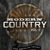 Dieguis productions modern country vol 2 icon