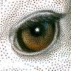 Pixeology artistichalftone plug in for photoshop icon