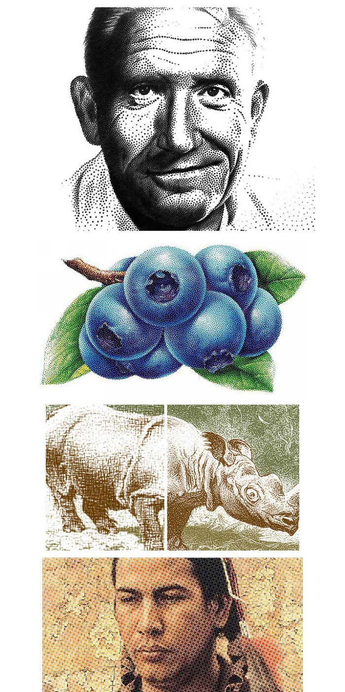 pixeology_artistichalftone_plug_in_for_photoshop