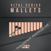 Vir2 instruments vital series mallets icon