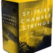 Spitfire audio chamber strings kontakt icon