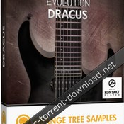 Orange tree sample evolution dracus icon