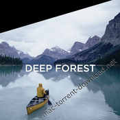 Phaseone latitude deep forest for capture one pro icon