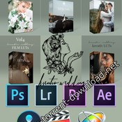 Kreativ wedding luts collection icon