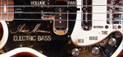 Adam monroe music electric bass icon