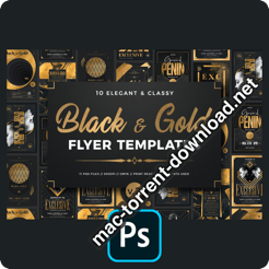 10 Black and Gold Flyers Bundle V2 4376779 icon